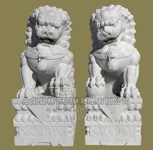 东方狮子(6)