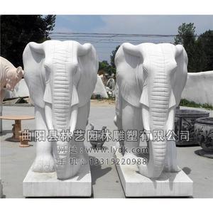 大象 (6)