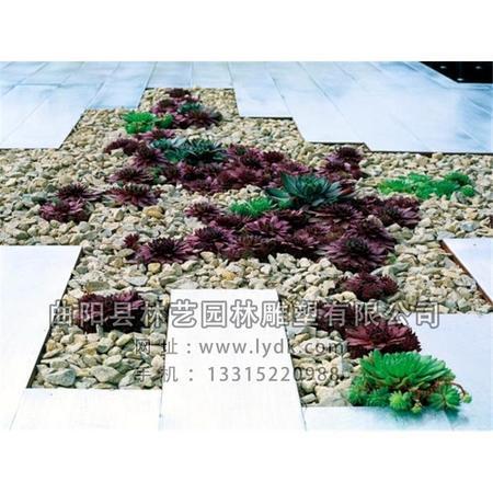 景观石 JGS-1004